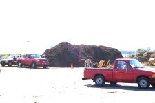 The mulch is allowed to cure and then is made available to the residents at no charge.