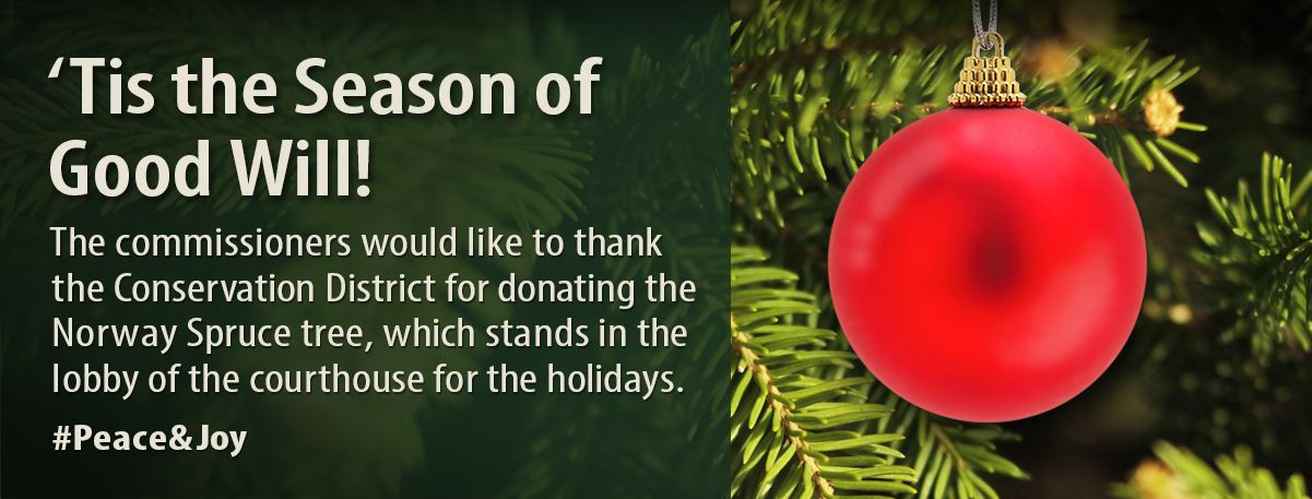 Commissioners thank the Conservation District for the holiday tree.