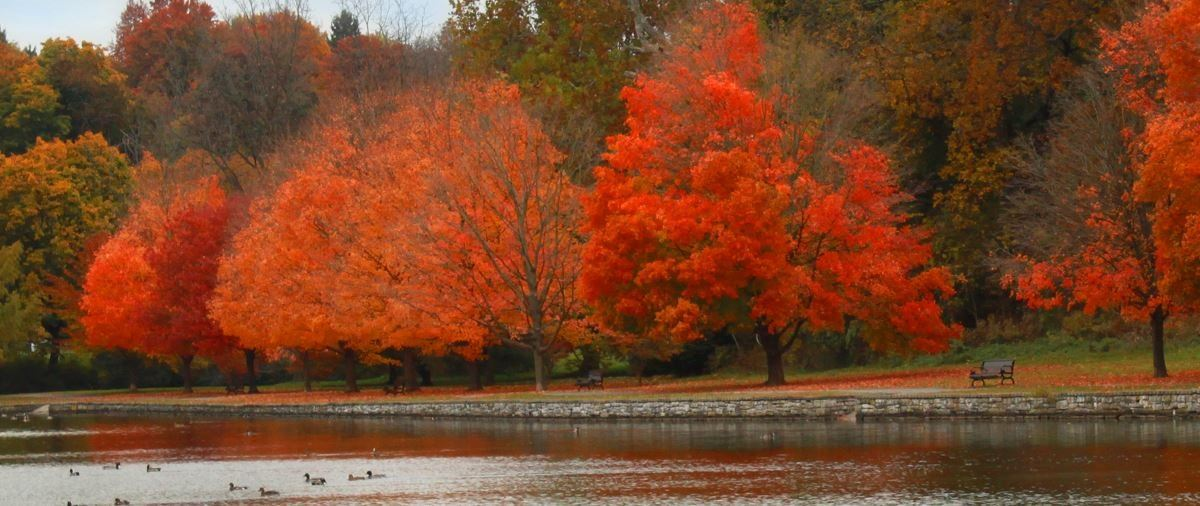 Childrens Lake in the Fall